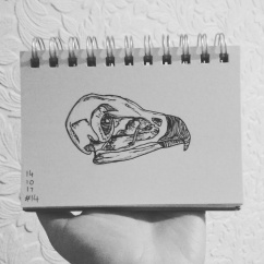 Day 14-Skull