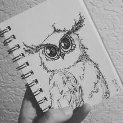 Day 2-Owl