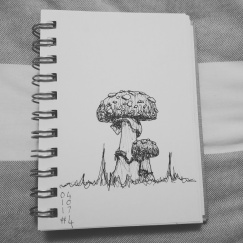 Day 4-Mushrooms
